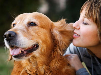 Dog Care Tips For Dog Owners