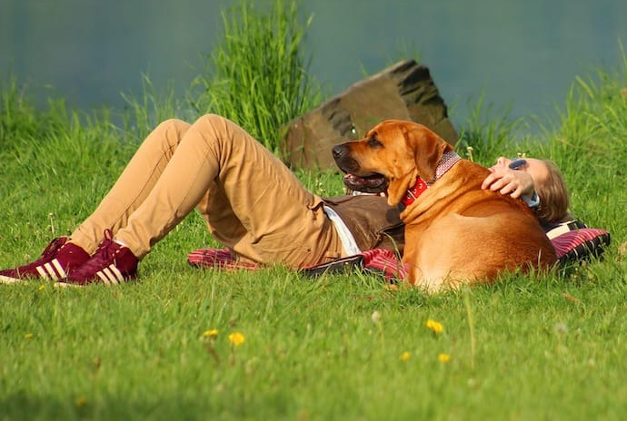 A dog and a girl lying in the grass